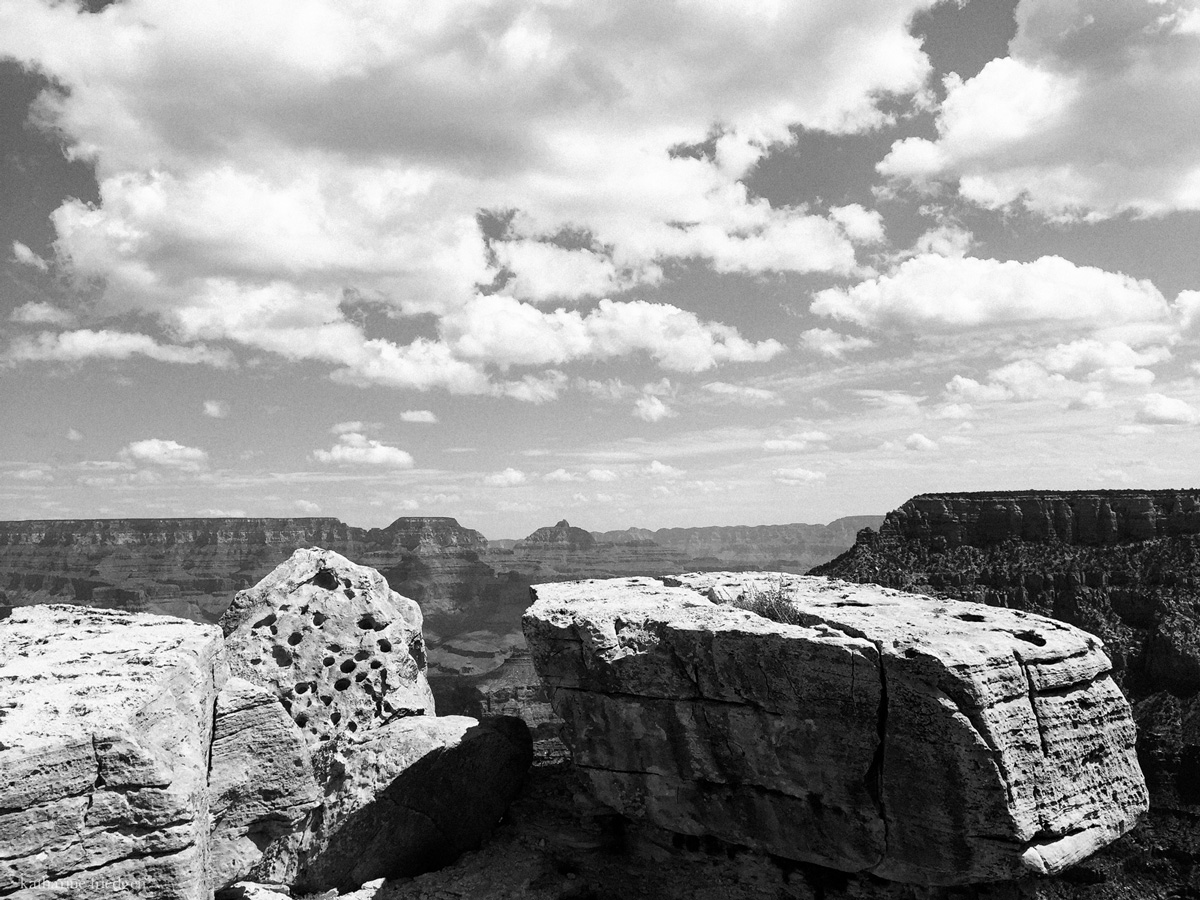 arizona-photography-katharine-friedgen-32
